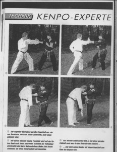 Kenpo-Karate Jeff Speakman